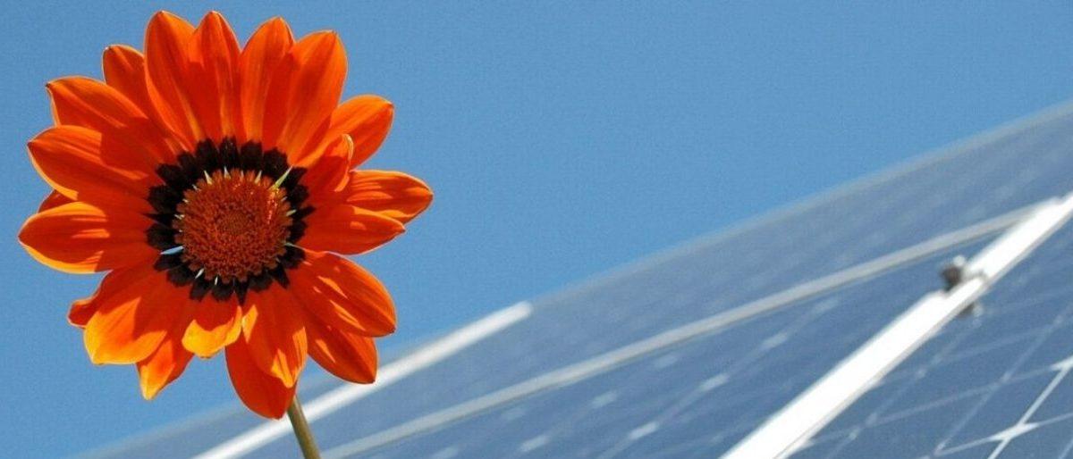 Energiris - financement cocitoyen d'installation de panneaux photovoltaiques bruxelles